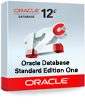 Oracle Database Standard Edition One